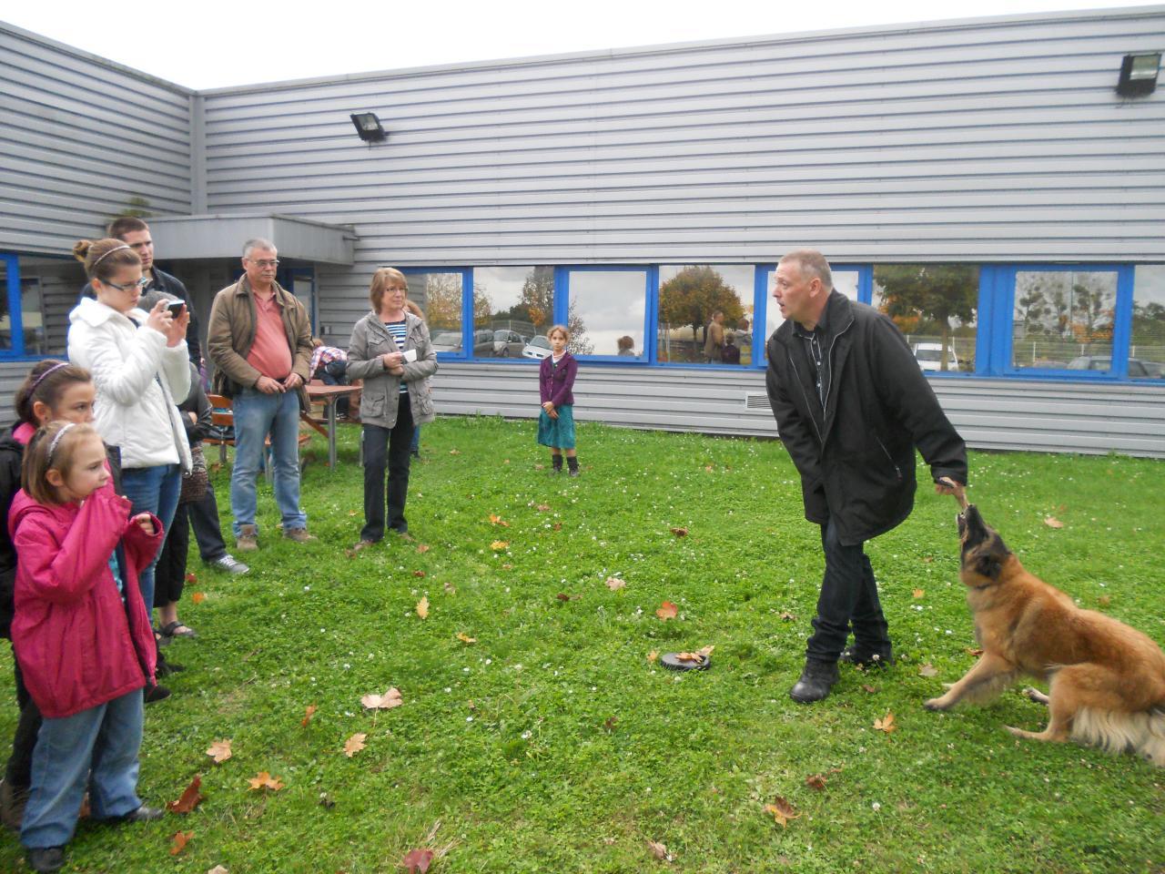 educ'dog: éducateur canin comportementaliste: formation risque canin